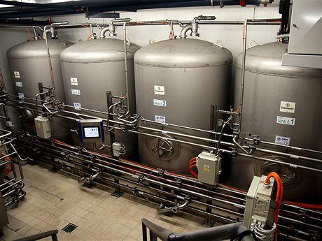 Ležácké tanky mají celkovou kapacitu 280 hektolitrů piva