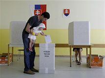Parlamentn� volby na Slovensku (12. �ervna 2010)