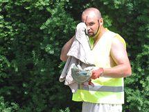Dělník v centru Brna si utírá pot (11. červen 2010)