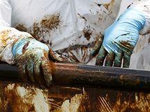 V zátoce Jimmy nedaleko louisianského města Venice vše pokrývá vrstva mastné ropy. (15. června 2010)