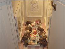 Ve spodní skříňce kuchyňské linky se usadily myši