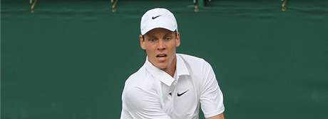 Tom Berdych