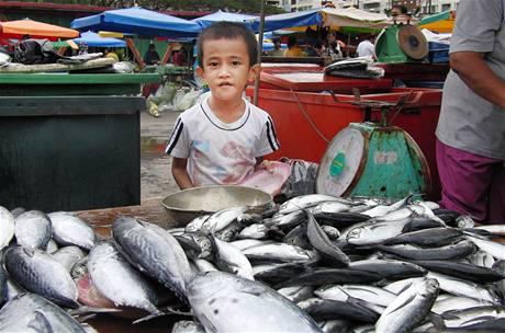Večerní trh v Kota Kinabalu
