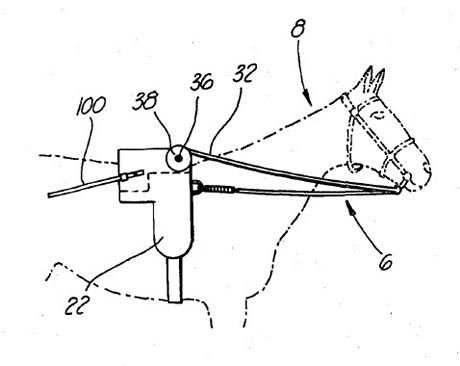 Remote control apparatus for controlling animals - 4304193