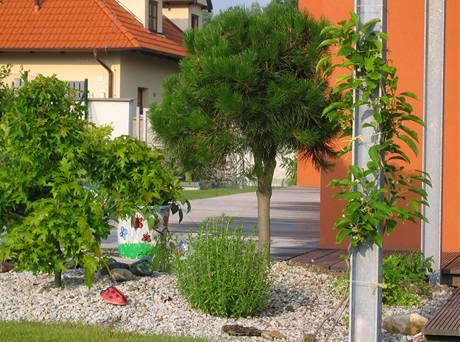 Soukromí na terase zajišťují dva pásy stromů a keřů