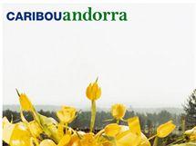 Caribou - obal olba Andorra (2007)