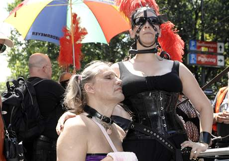 Rakouskou metropolí prošel duhový průvod homosexuálů (3. července 2010)