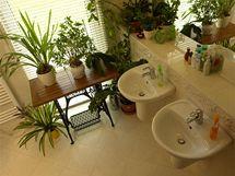 I koupelna prozrazuje zálibu majitelů v pěstování pokojových rostlin