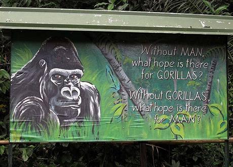 Gorilí billboard