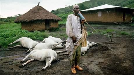 Mrak oxidu uhličitého udusil přes 1800 lidí a několikanásobný počet kusů dobytka. (snímek je ze srpna 1986)