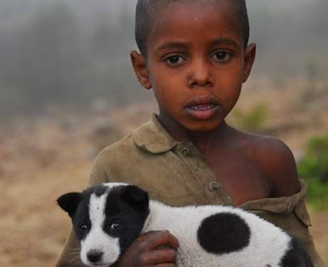 Častou obětí pokousání zvířaty jsou děti předškolního věku