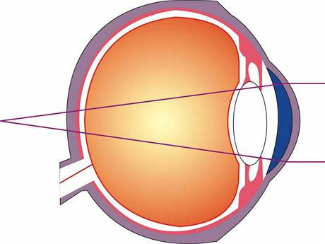dalekozrake-oko