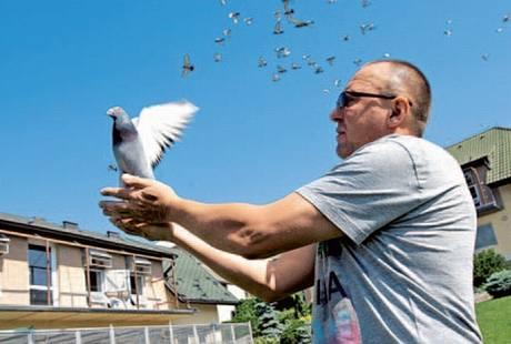 Nebe nad Dolním Benešovem křižují stovky holubů