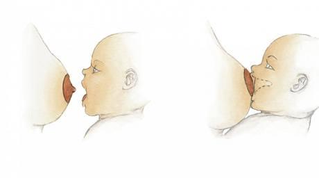 Ukázka správné techniky kojení