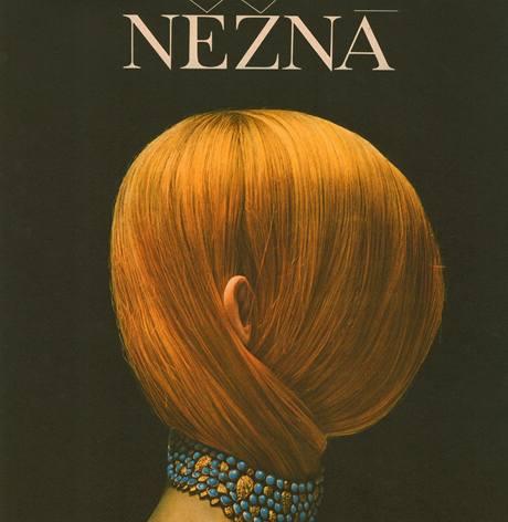 Plakát k filmu Něžná