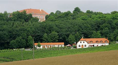 Nový majitel chce hrad Sádek opravit a zpřístupnit veřejnosti. Hodlá spolupracovat i s blízkým vinařským centrem
