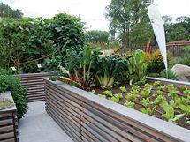 """Zeleninová zahrada """"stará moudra"""", nové pojetí"""
