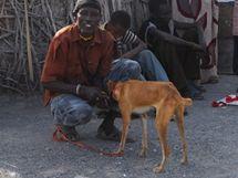 Vakcinace psů v městečku Loiyangalani