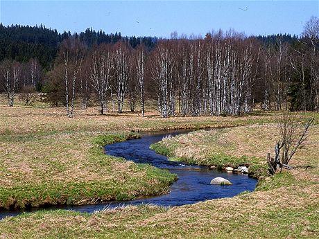 Meandr Studené Vltavy u Nového Údolí