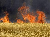 Rusko zachvátily požáry (31. července 2010)