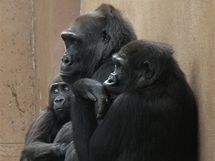 Moja (vpravo) s tetou Kambou a bráškou Tatu