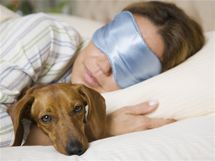Pes do postele nepatří, ale kdo by nepustil svého mazlíčka do teplých peřin. Riskujete ale blechy, klíšťata i ekzémy.