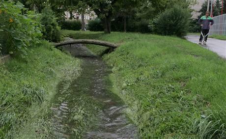 Jindy nenápadná říčka Nemilanka po bleskové povodni, kdy 7. srpna ráno zatopila olomouckou čtvrť Nemilany.