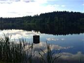 Pleničský rybník za Černou v Pošumaví