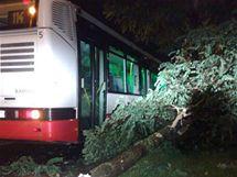 Strom spadl na autobus MHD v Praze - Kunraticích. (15. srpna 2010)