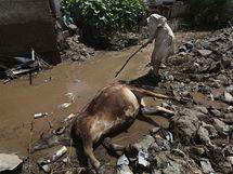 Záplavy v Indii 12. srpna 2010)
