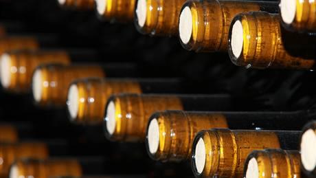 Uskladněné láhve vína ve sklepě manželů Skálových v Rudolicích na Mostecku.