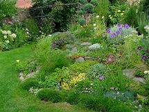 Cestičkou kolem jezírka projdete do užitkové části zahrady (srpen 2009)