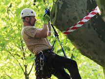 Mistrovství ve stromolezení v parku u Anthroposu.