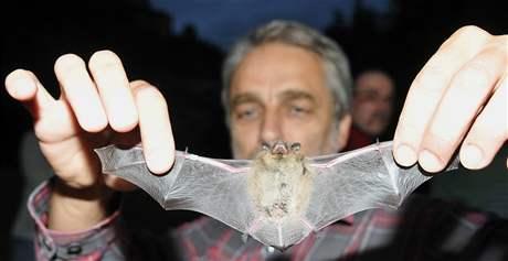 Přírodovědci o víkendu kroužkovali netopýry, u jeskyně Na Turoldu sledovalo jejich práci asi 120 obdivovatelů přírody.