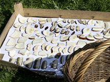 P�i su�en� rozprost�ete houby v dostate�n� vzd�lenosti a such�m prost�ed�