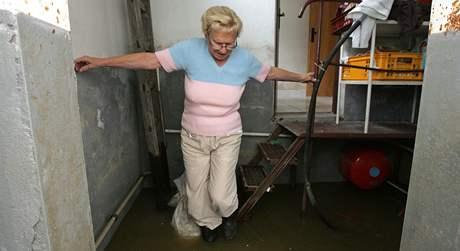 Libuše Martínková v zatopeném sklepě svého domu v Petrovicích u Karviné.