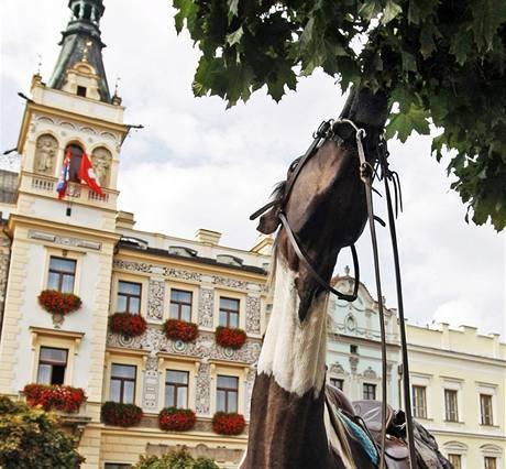 Přehlídka Koně v akci. Průvod láká na pardubické závodiště