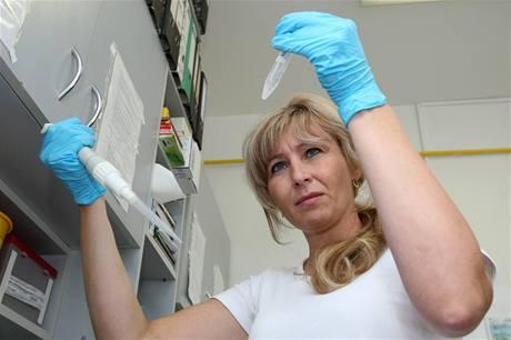 Pracovnice laboratoře Renata Buriánová připravuje vzorek pro roztřídění.