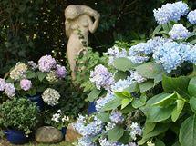 Jedno z mnoha romantických zákoutí v zahradě Ivy Hüttnerové