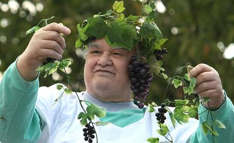 vinobraní-idnes.cz