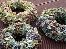 Usušená hortenzie je křehká a snadno se láme. Na vytvoření hortenziových věnečků proto použijte čerstvé květy, které drátkem anebo provázkem připevněte k polystyrénovému podkladu