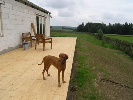 Stavba rodinného domu a terasy ze smrkových prken