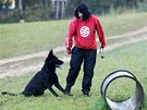 Studentka oboru kynologie České zemědělské akademie v Humpolci Michaela Havlíčková vede výcvik svého psa