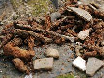 Středověké kovové artefakty, torza hřebíků (na snímku), ale i mince a další historické předměty nalezli ve výkopech u zříceniny kostela svatého Linharta v lázeňských lesích archeologové z karlovarského muzea (23.9.2010)