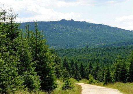 Jizerské hory. Cesta od Předělu k chatě Smědava, v dáli Jizera