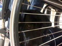 Nejoblíbenější místo Topinky je pod vozíkem svého pána