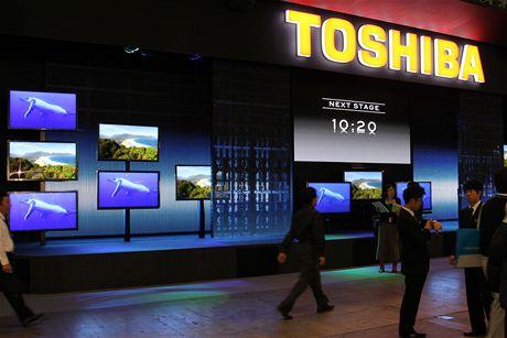 CEATEC 2010 -Toshiba, Sony, Panasonic, Sharp a Pioneer byly jedny z mála firem, které zná i Evropský zákazník a vystavovaly na CEATECu. Japonský trh je od evropského i amerického zcela odlišný.