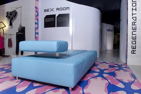 Sex room: slouží pouze k sexu. Místnost je záměrně umístěna v dispozičním středu soukromé části bytu