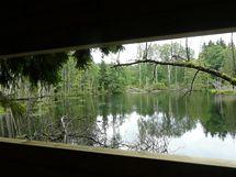 Nová pozorovatelna bobrů u rybníku Kolm v Českém lese
