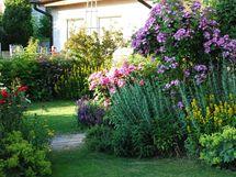 Půvabná zahrada má za sebou čtrnáct let poctivého budování